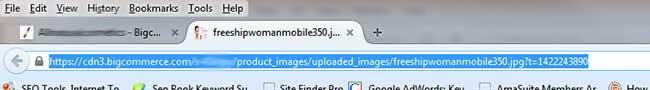 BigCommerce Image URL